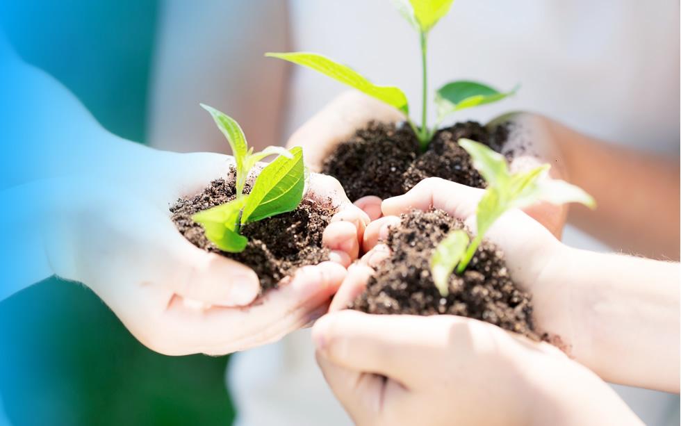thumb-tree-planting