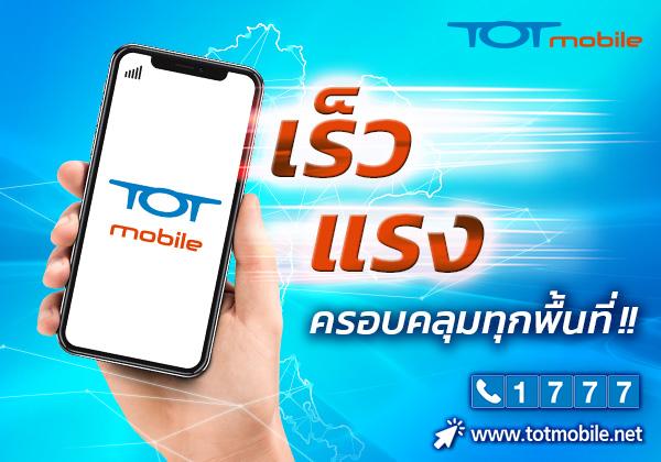 TOT-600x420px (7)